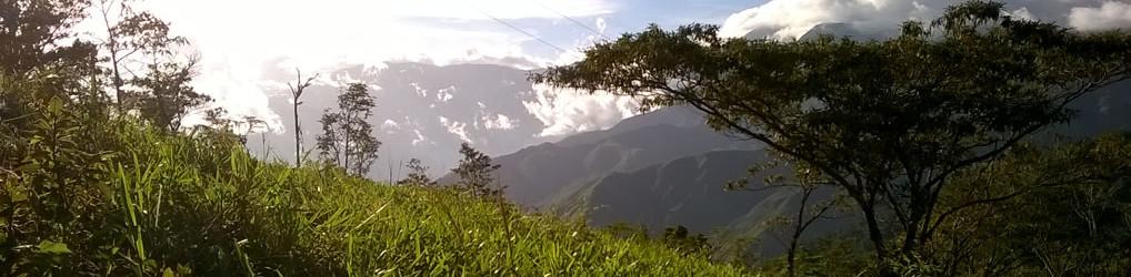 Freiwilligenarbeit in Costa Rica