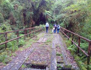 wildschutzgebiet-costa-rica-11