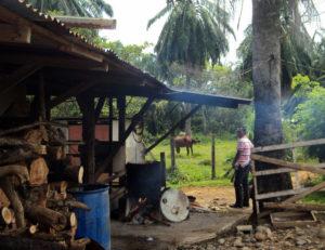 environmental-work-costa-rica-22